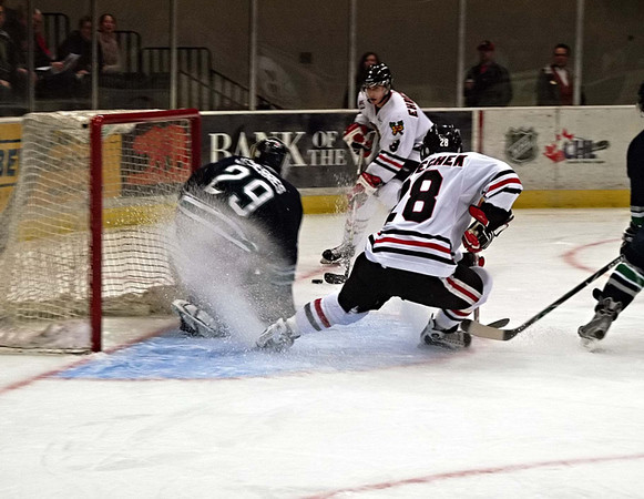 Portland Winterhawks Hockey